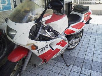 P1000003.JPG